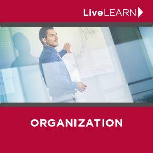 Online Organization Coaching